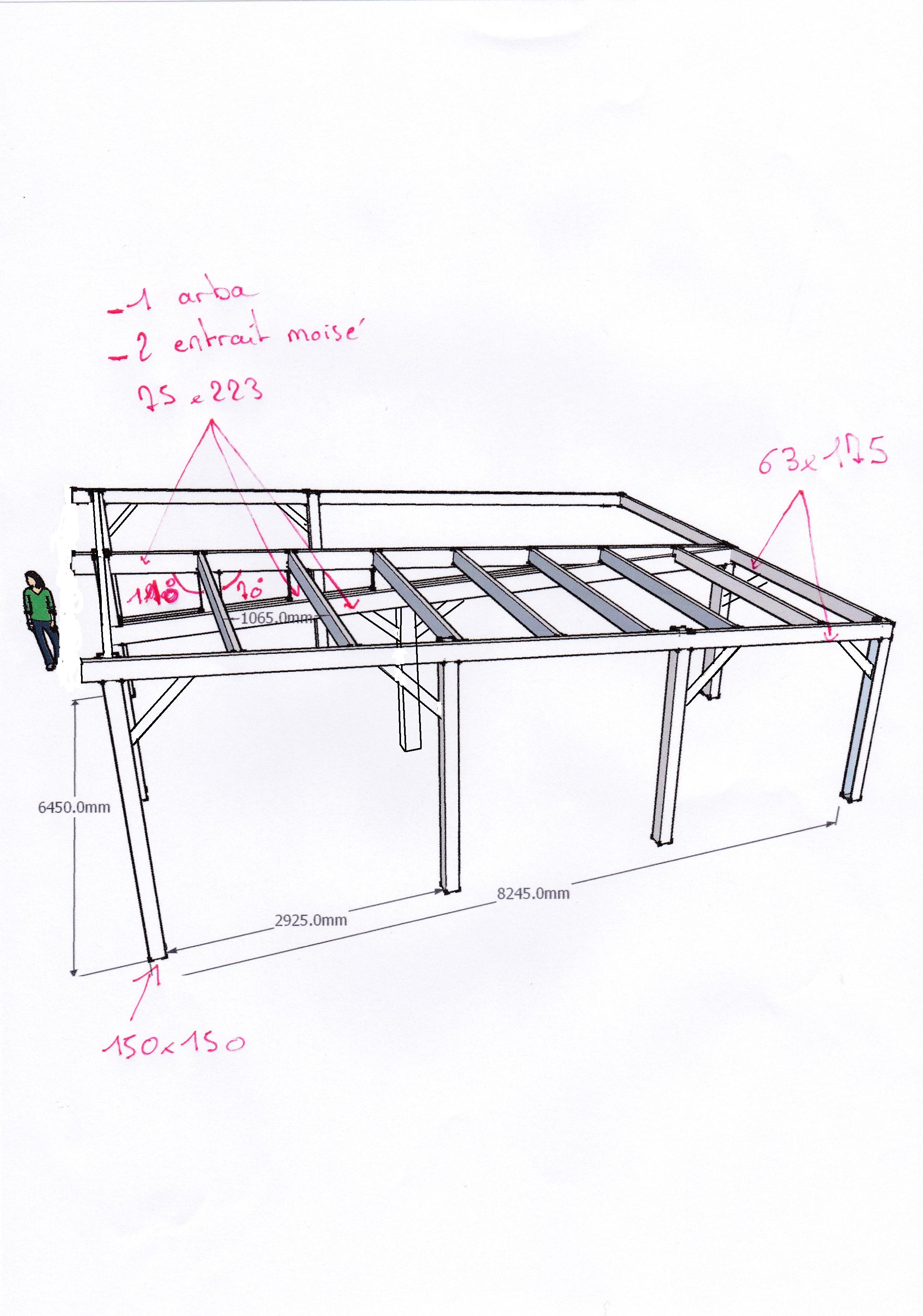aide dimension charpente pour abri voiture 43 messages. Black Bedroom Furniture Sets. Home Design Ideas