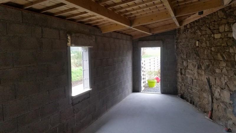 cr ation faux plafond sous toit mono pente 10 messages. Black Bedroom Furniture Sets. Home Design Ideas