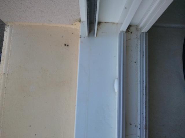 infiltration d 39 eau sous le seuil de porte fen tre 13 messages. Black Bedroom Furniture Sets. Home Design Ideas