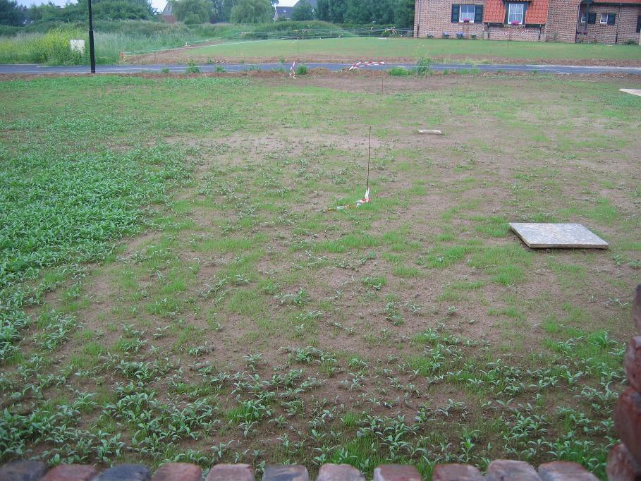 préparation du terrain pour semer du gazon en septembre - 21 messages